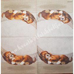 Szalvéta, kutya, macska, 33x33 cm (6)