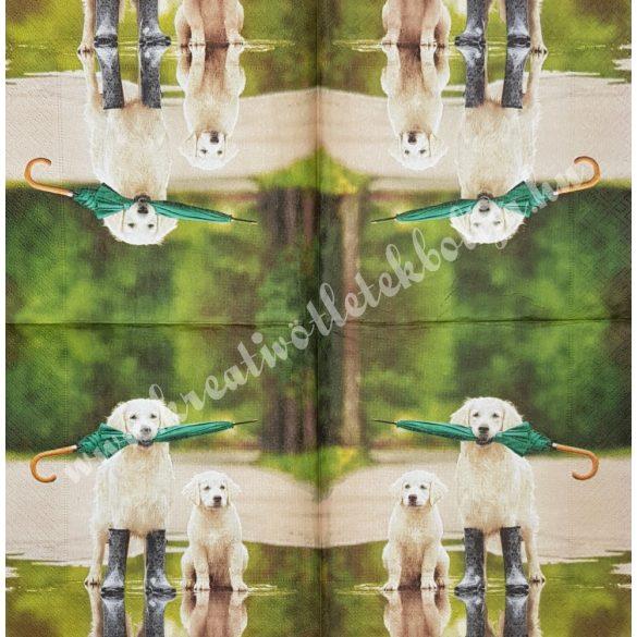 Szalvéta, kutya, macska 7., 33x33 cm