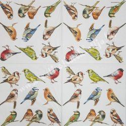 Szalvéta, madarak 33x33cm (5)