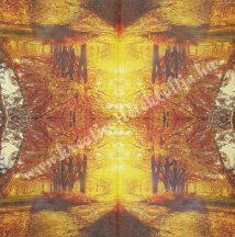 Szalvéta, Ősz 46., 33x33, 1 darab