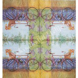 Szalvéta, tájkép, 33x33 cm (19)