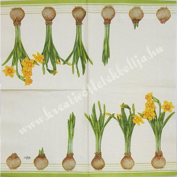 Szalvéta, tavaszi virágok, nárcisz, 33x33 cm (9)