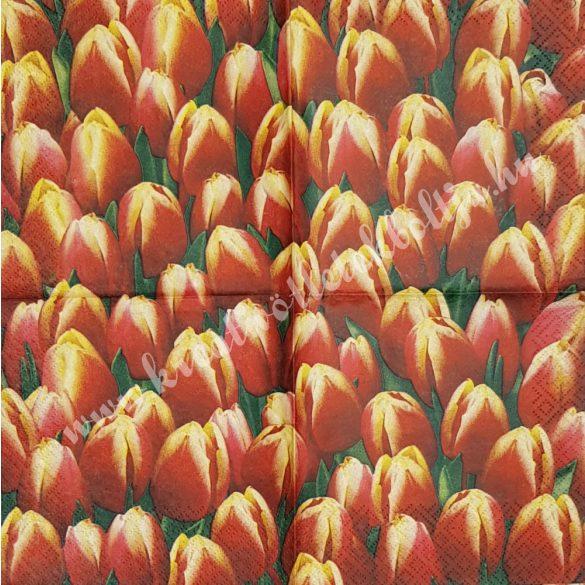 Szalvéta, tulipán, 25x25 cm (3)