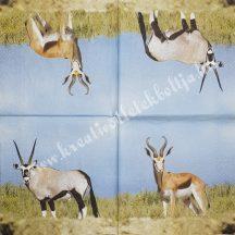 Szalvéta, vadállatok, antilop, 32x32 cm, 1 darab