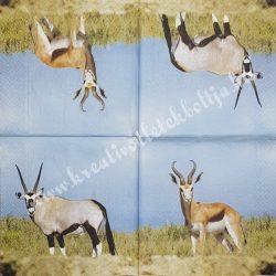 Szalvéta, vadállatok 12., antilop, 33x33 cm