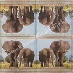 Szalvéta, vadállatok, elefánt, 33x33 cm (2)