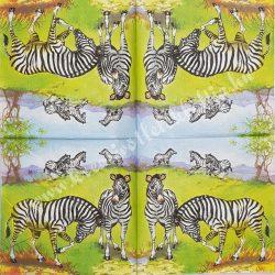 Szalvéta, vadállatok 20., zebra, 33x33 cm