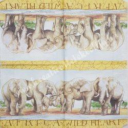 Szalvéta, vadállatok, elefánt, 33x33 cm (3)