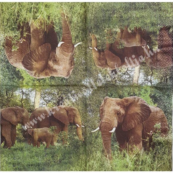 Szalvéta, vadállatok, elefánt, 33x33 cm (9)