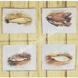 Szalvéta, tenger, halak, 25x25 cm, 1 darab