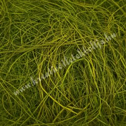 Szizál sötétzöld, 20 gr/csomag