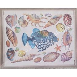 Textiltranszfer, hal, kagyló, 25x35 cm