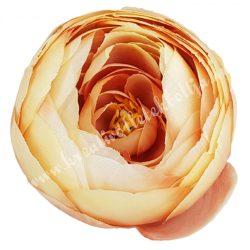 Boglárka virágfej, cirmos barack, 7 cm